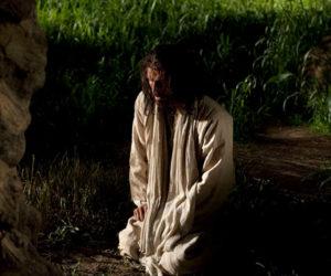In the Garden (of Gethsemane)
