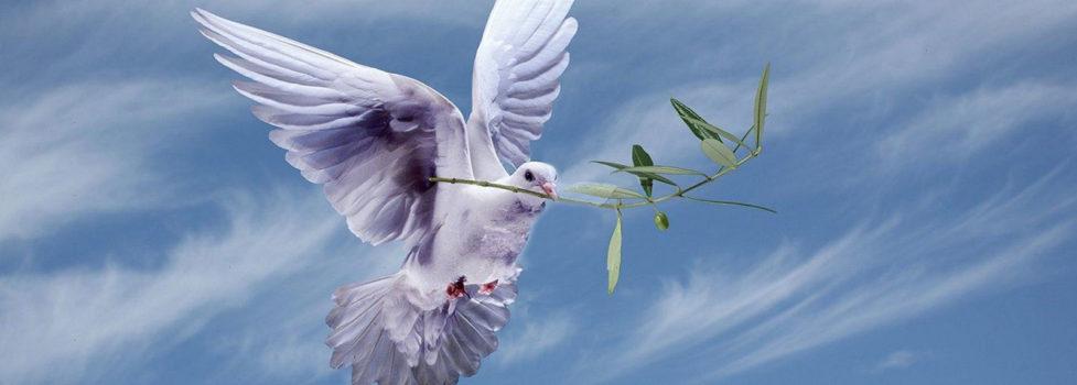 Hope Is Peace